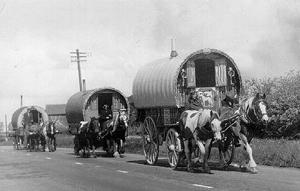 Albany Australia- Accommodation-Albany Caravan Parks- Hotel