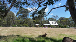Charnigup Bed & Breakfast  ALBANY WA AUSTRALIA ACCOMMODATION